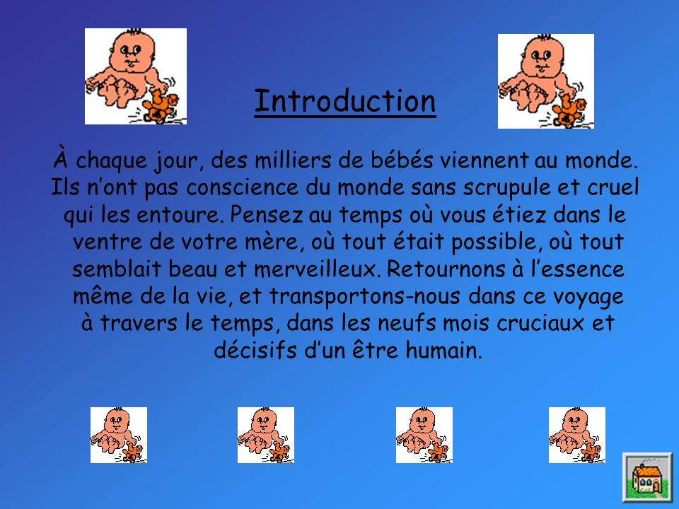 -À 20 semaines (5mois), le bébé est pratiquement formé.