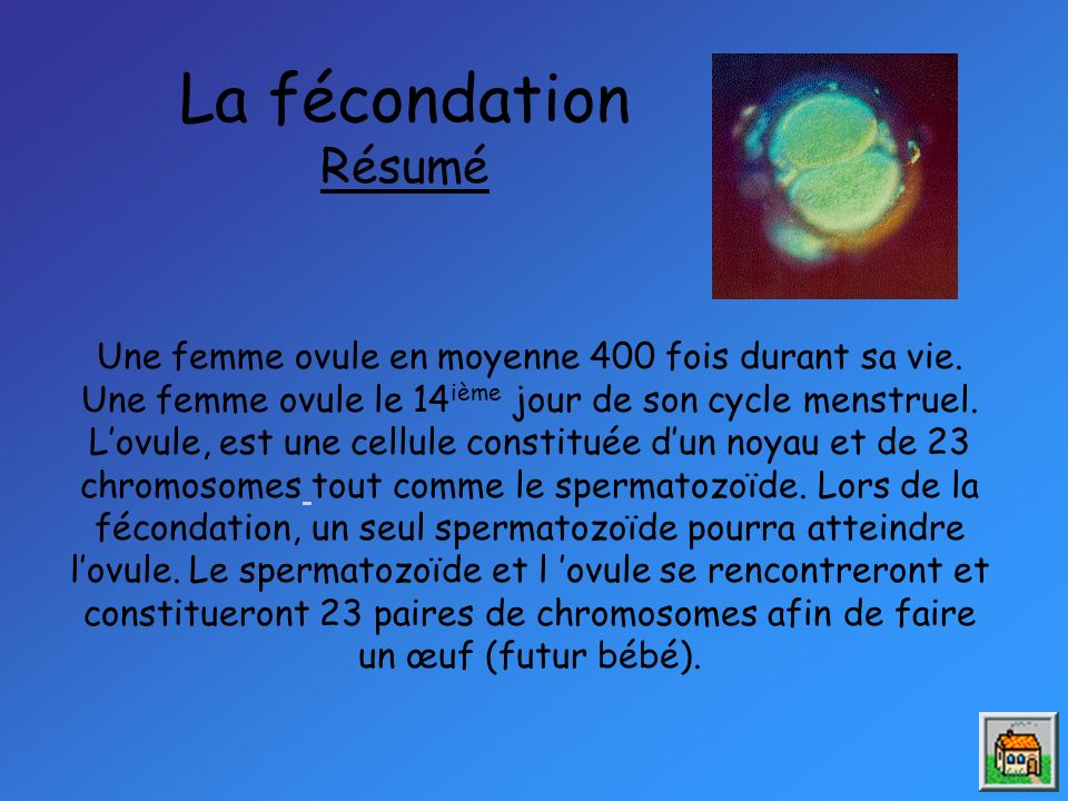 La fécondation Résumé Une femme ovule en moyenne 400 fois durant sa vie.