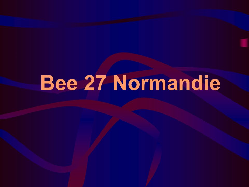 Bee 27 Normandie