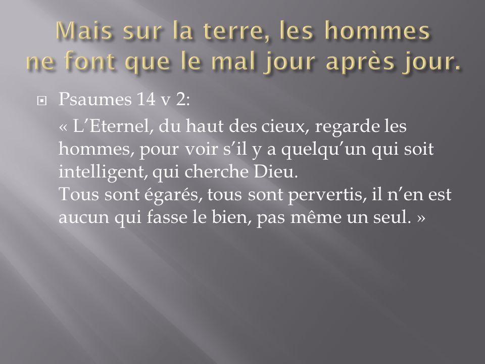 Psaumes 14 v 2: « LEternel, du haut des cieux, regarde les hommes, pour voir sil y a quelquun qui soit intelligent, qui cherche Dieu. Tous sont égarés