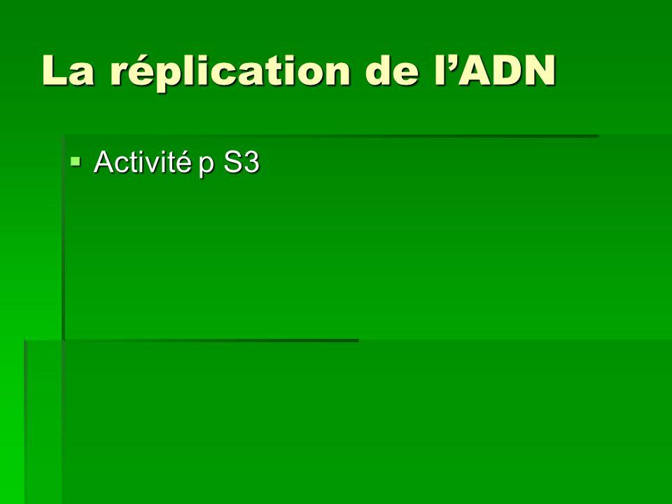 La réplication de lADN Activité p S3 Activité p S3