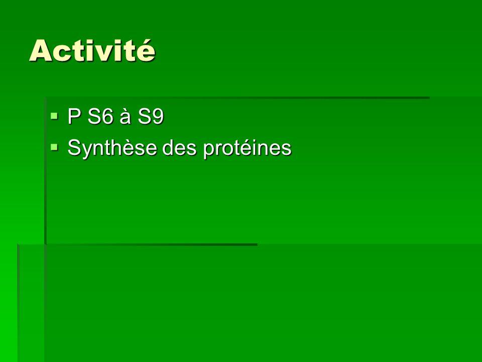 Activité P S6 à S9 P S6 à S9 Synthèse des protéines Synthèse des protéines