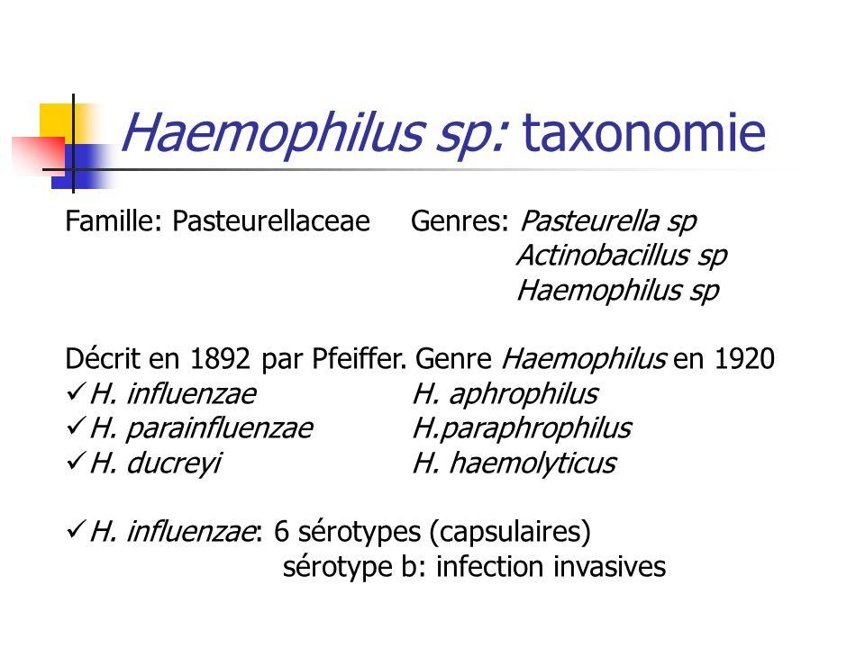 Haemophilus sp: taxonomie Famille: PasteurellaceaeGenres: Pasteurella sp Actinobacillus sp Haemophilus sp Décrit en 1892 par Pfeiffer. Genre Haemophil