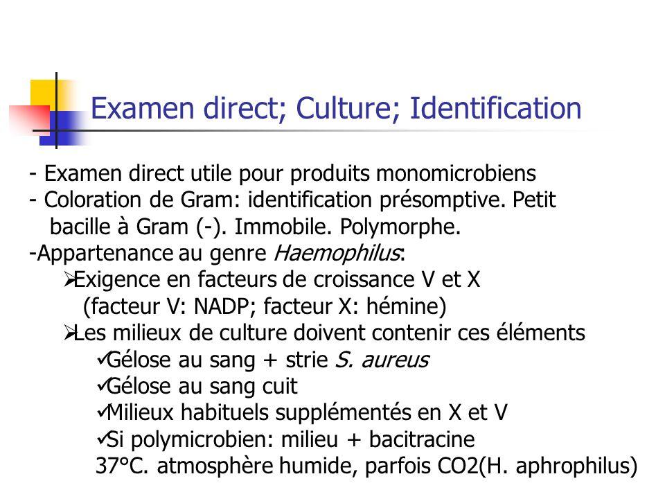 Examen direct; Culture; Identification - Examen direct utile pour produits monomicrobiens - Coloration de Gram: identification présomptive. Petit baci