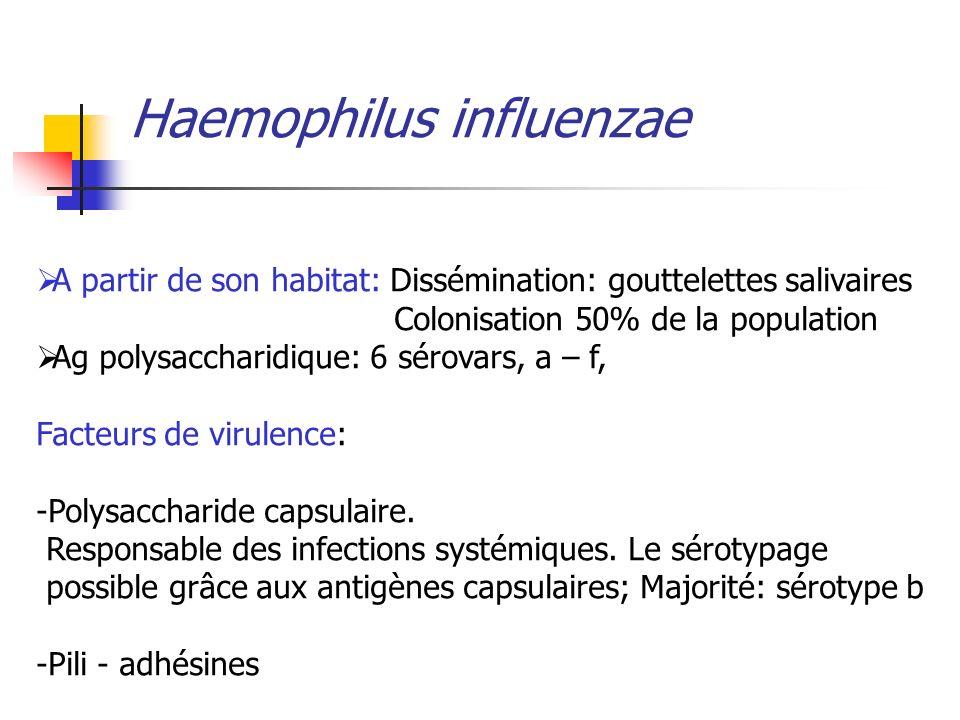 Haemophilus influenzae A partir de son habitat: Dissémination: gouttelettes salivaires Colonisation 50% de la population Ag polysaccharidique: 6 sérov