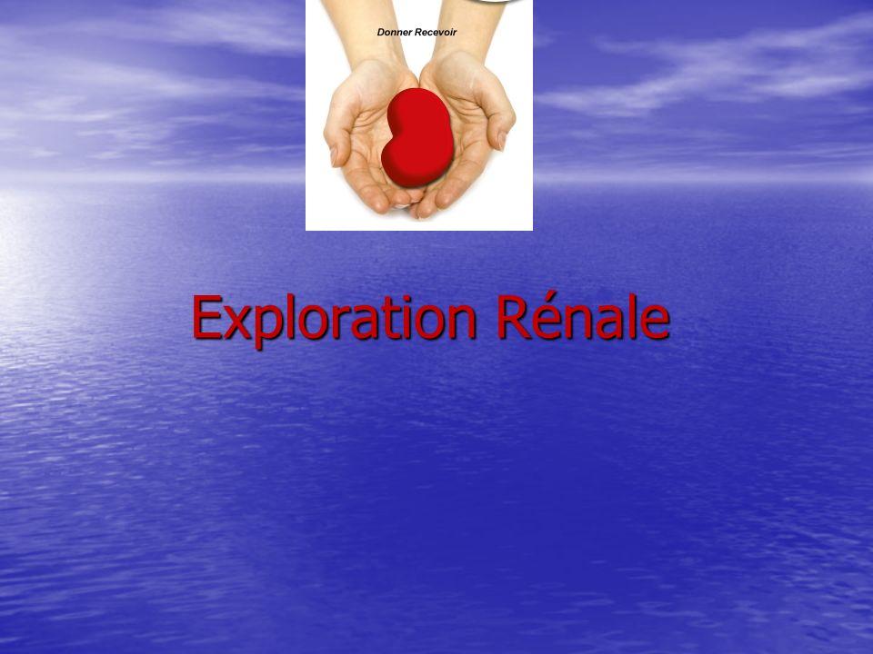 Exploration Rénale Exploration Rénale