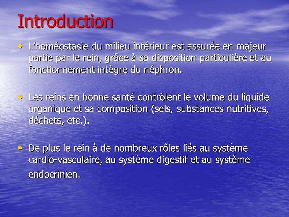 Introduction Lhoméostasie du milieu intérieur est assurée en majeur partie par le rein, grâce à sa disposition particulière et au fonctionnement intèg