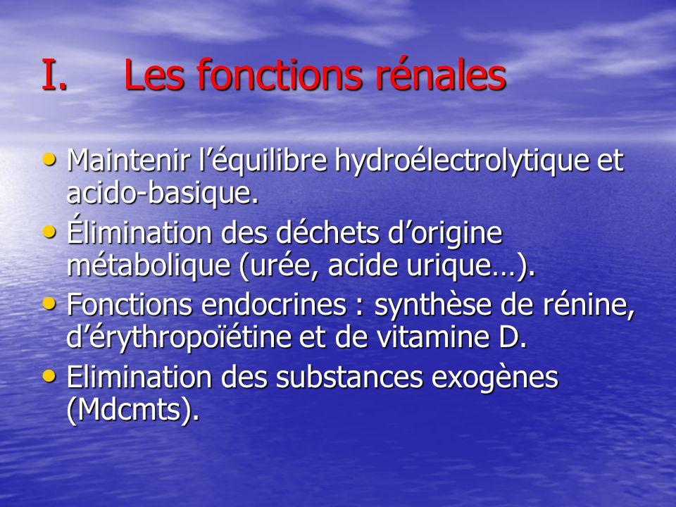 I.Les fonctions rénales Maintenir léquilibre hydroélectrolytique et acido-basique. Maintenir léquilibre hydroélectrolytique et acido-basique. Éliminat