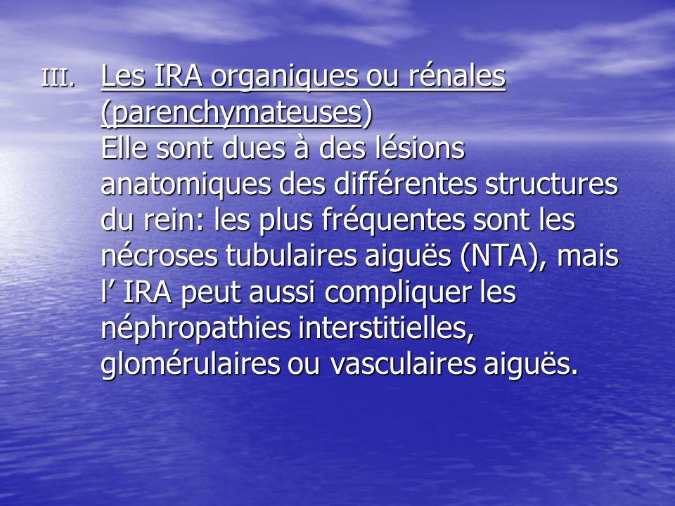 III. Les IRA organiques ou rénales (parenchymateuses) Elle sont dues à des lésions anatomiques des différentes structures du rein: les plus fréquentes