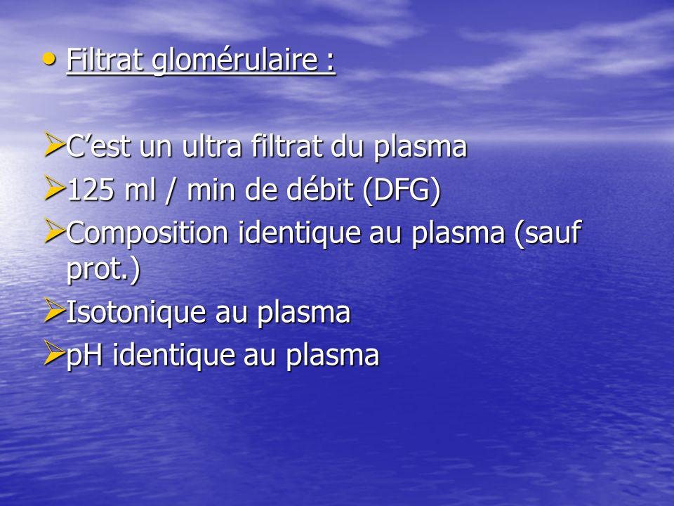 Filtrat glomérulaire : Filtrat glomérulaire : Cest un ultra filtrat du plasma Cest un ultra filtrat du plasma 125 ml / min de débit (DFG) 125 ml / min
