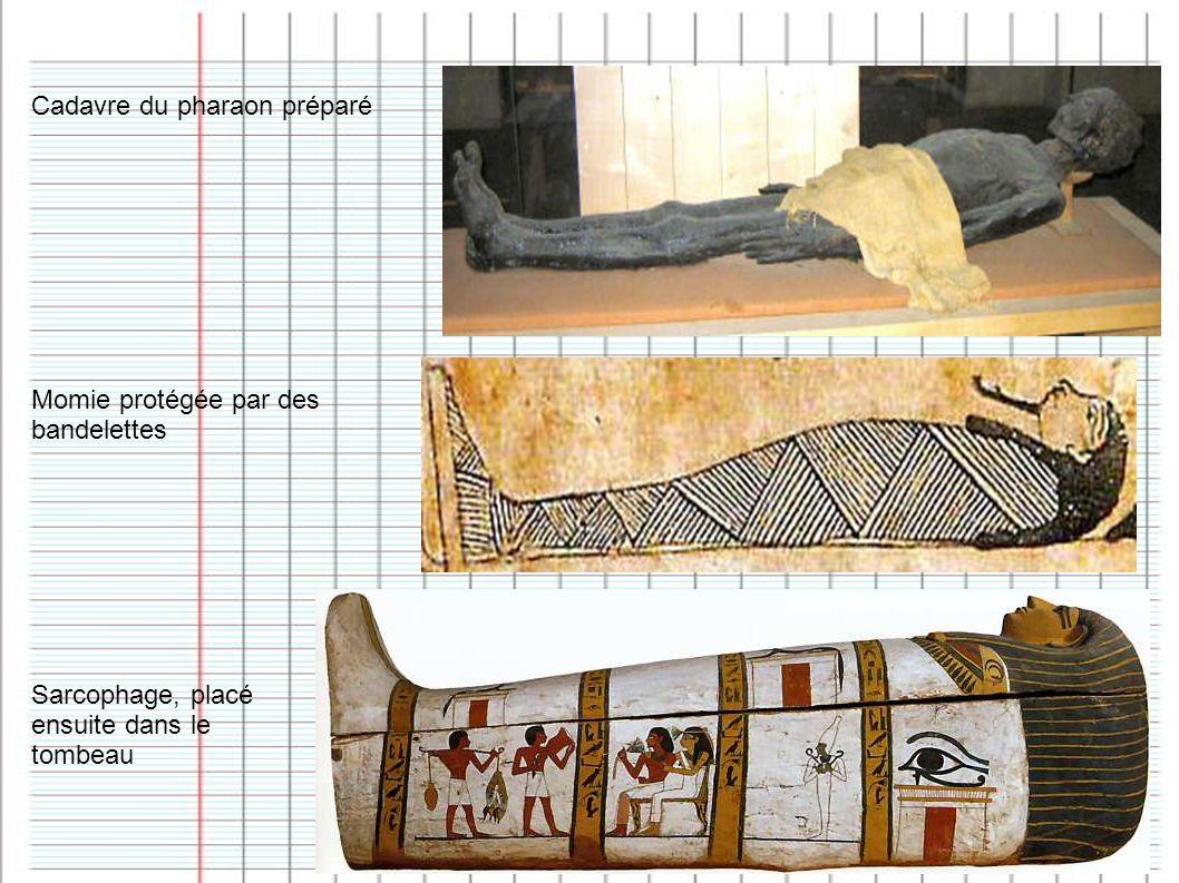 Momie protégée par des bandelettes Cadavre du pharaon préparé Sarcophage, placé ensuite dans le tombeau
