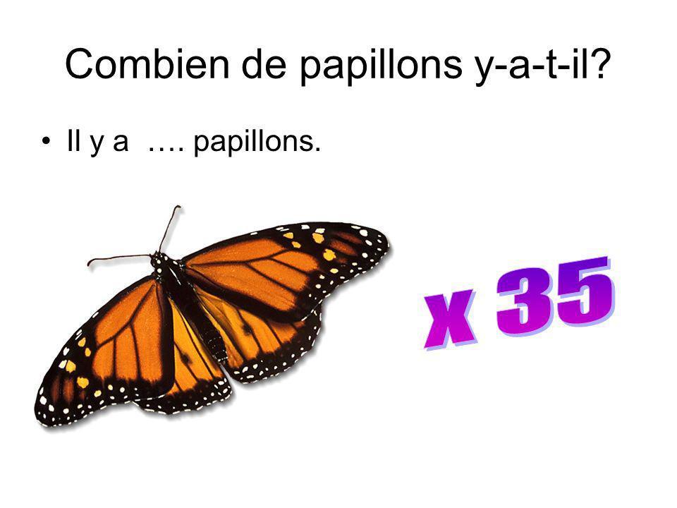 Combien de papillons y-a-t-il? Il y a …. papillons.