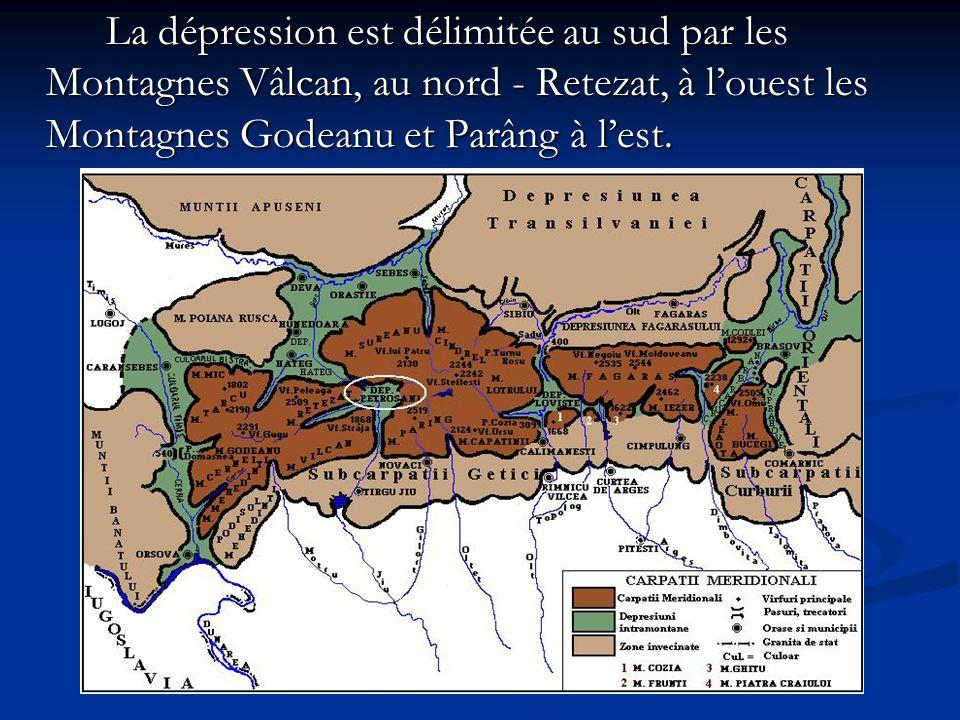 La dépression est délimitée au sud par les Montagnes Vâlcan, au nord - Retezat, à louest les Montagnes Godeanu et Parâng à lest. La dépression est dél