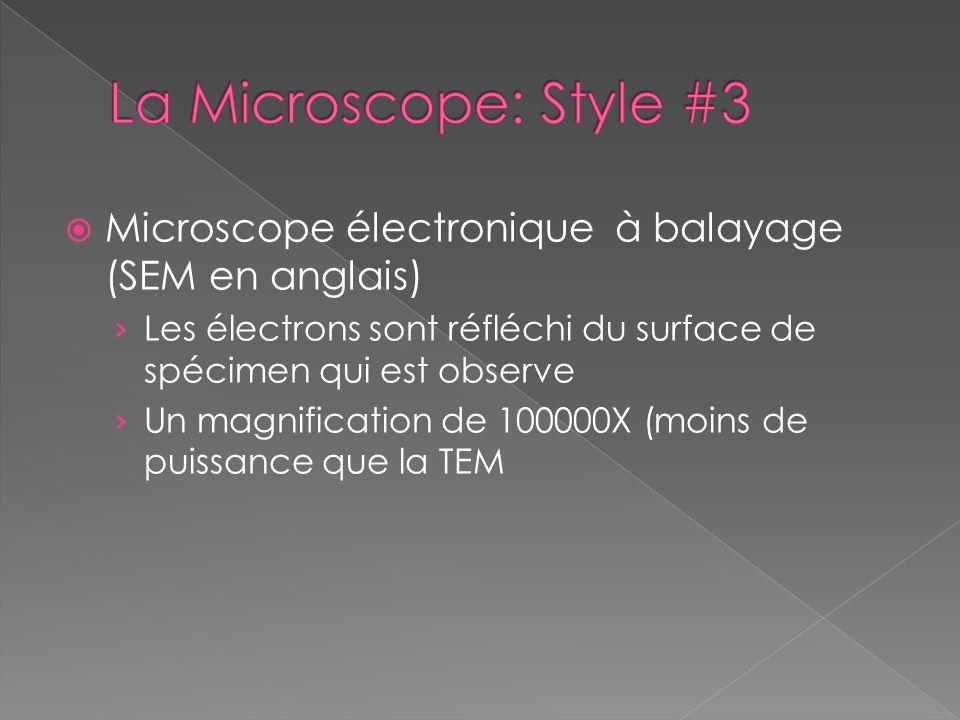 Microscope électronique à balayage (SEM en anglais) Les électrons sont réfléchi du surface de spécimen qui est observe Un magnification de 100000X (mo
