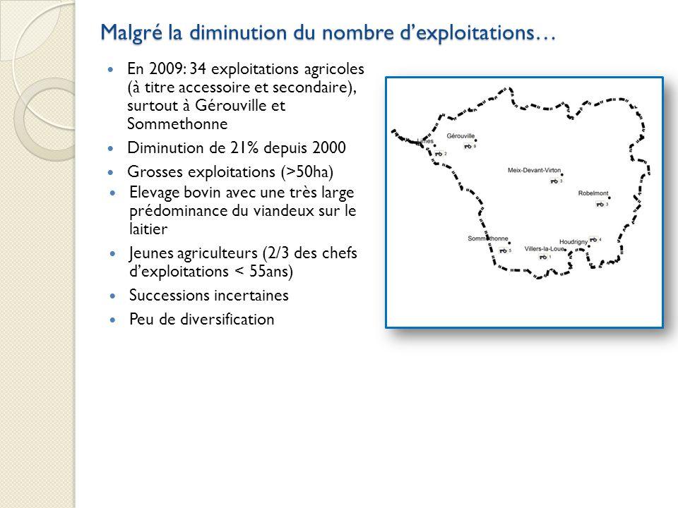 Malgré la diminution du nombre dexploitations… En 2009: 34 exploitations agricoles (à titre accessoire et secondaire), surtout à Gérouville et Sommeth
