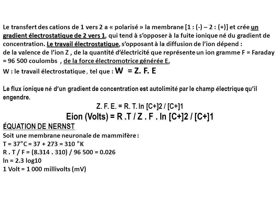 un gradient électrostatique de 2 vers 1 Le travail électrostatique Le transfert des cations de 1 vers 2 a « polarisé » la membrane [1 : (-) – 2 : (+)]