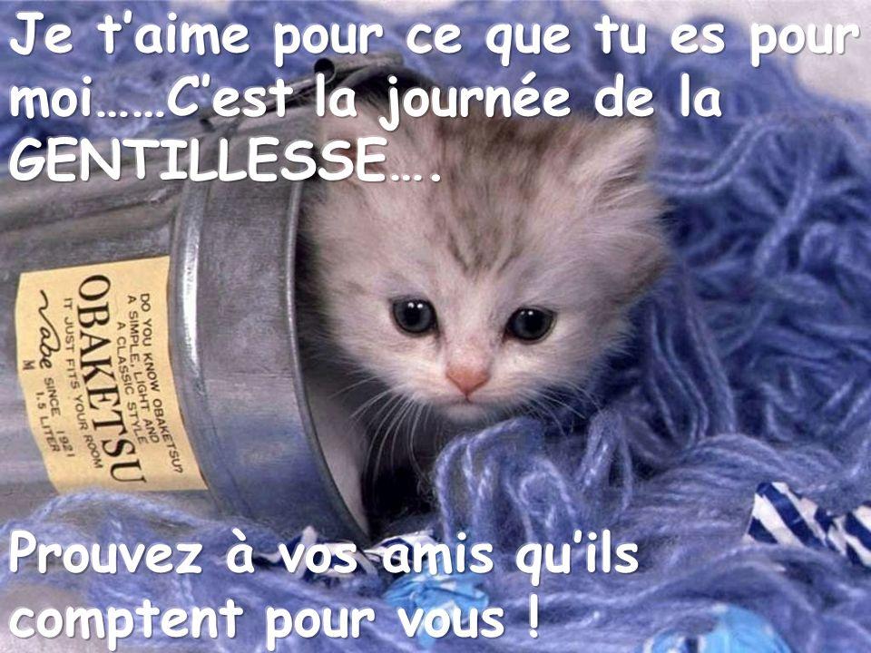 On dit quin faut une minute pour connaître une personne gentille… Gentilles pensées à vous… Tu es mon ami, jen suis honorée !!!