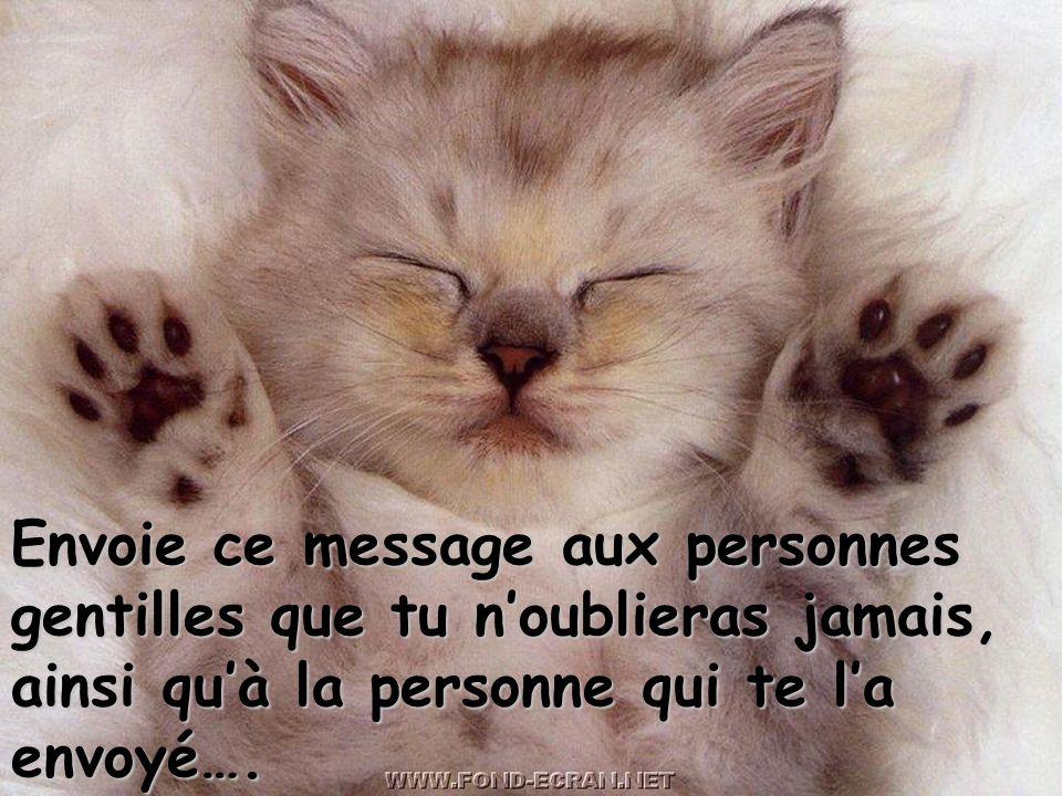 Envoie ce message aux personnes gentilles que tu noublieras jamais, ainsi quà la personne qui te la envoyé….