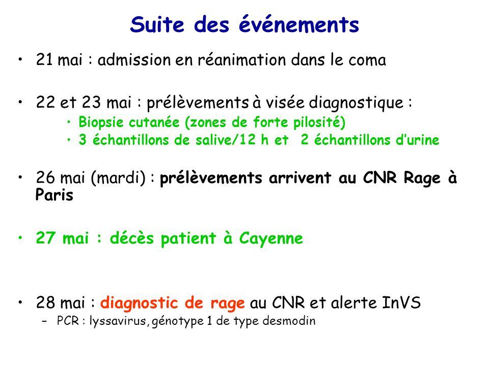 Suite des événements 21 mai : admission en réanimation dans le coma 22 et 23 mai : prélèvements à visée diagnostique : Biopsie cutanée (zones de forte pilosité) 3 échantillons de salive/12 h et 2 échantillons durine 26 mai (mardi) : prélèvements arrivent au CNR Rage à Paris 27 mai : décès patient à Cayenne 28 mai : diagnostic de rage au CNR et alerte InVS –PCR : lyssavirus, génotype 1 de type desmodin