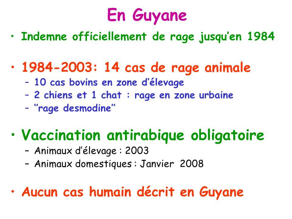 En Guyane Indemne officiellement de rage jusquen 1984 1984-2003: 14 cas de rage animale –10 cas bovins en zone délevage –2 chiens et 1 chat : rage en zone urbaine –rage desmodine Vaccination antirabique obligatoire –Animaux délevage : 2003 –Animaux domestiques : Janvier 2008 Aucun cas humain décrit en Guyane