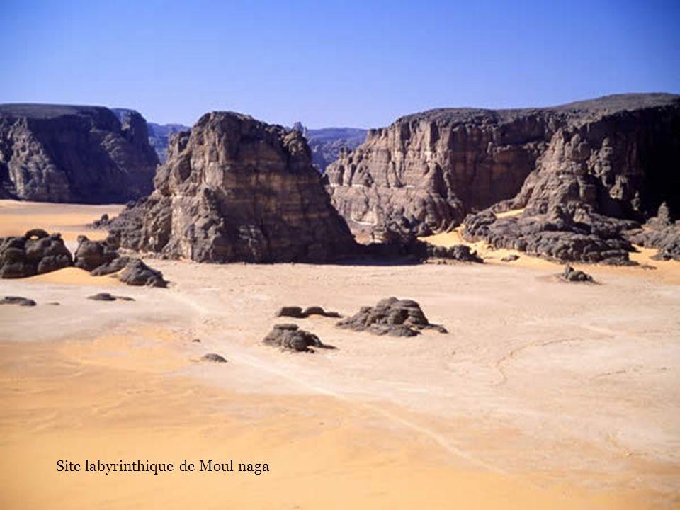Négociation pour lachat dune Chèvre