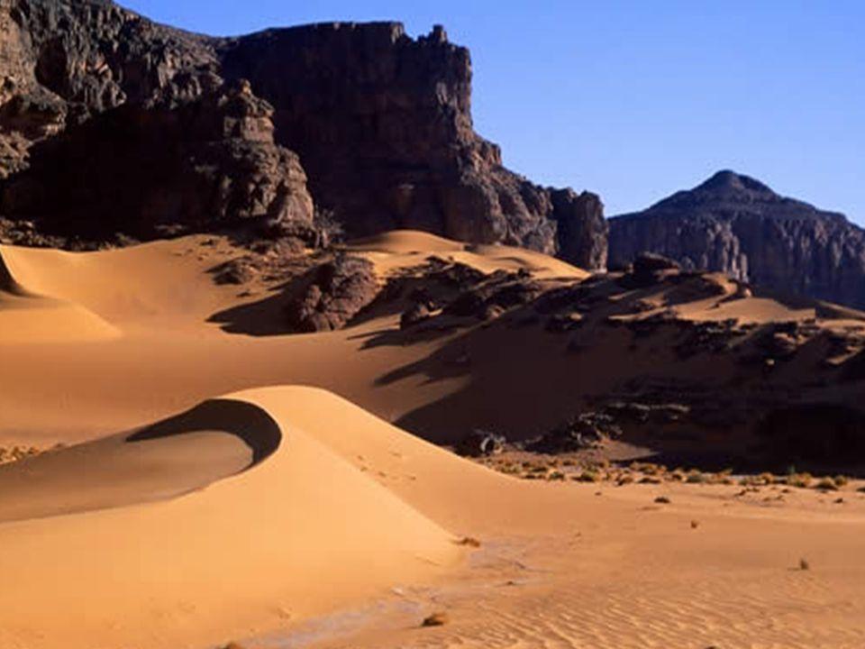 Site de Djabaen (scène de chasse vieille de 4000 à 5000 ans)
