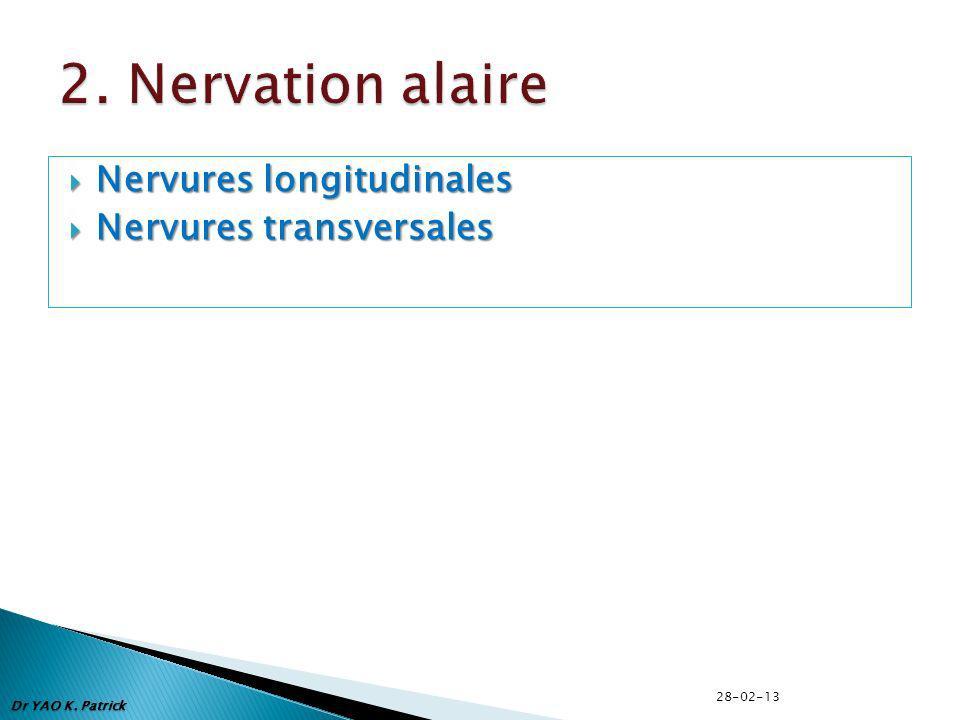 Nervures longitudinales Nervures longitudinales Nervures transversales Nervures transversales Dr YAO K. Patrick 28-02-13