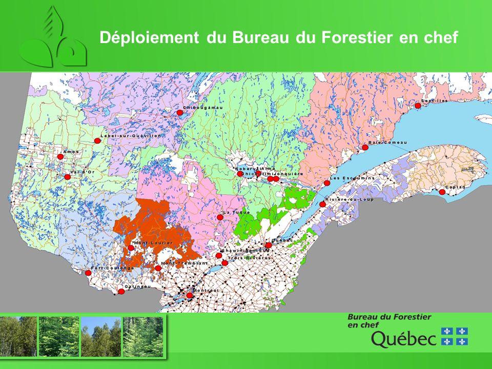 Déploiement du Bureau du Forestier en chef