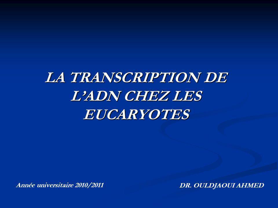 LA TRANSCRIPTION DE LADN CHEZ LES EUCARYOTES Année universitaire 2010/2011 DR. OULDJAOUI AHMED
