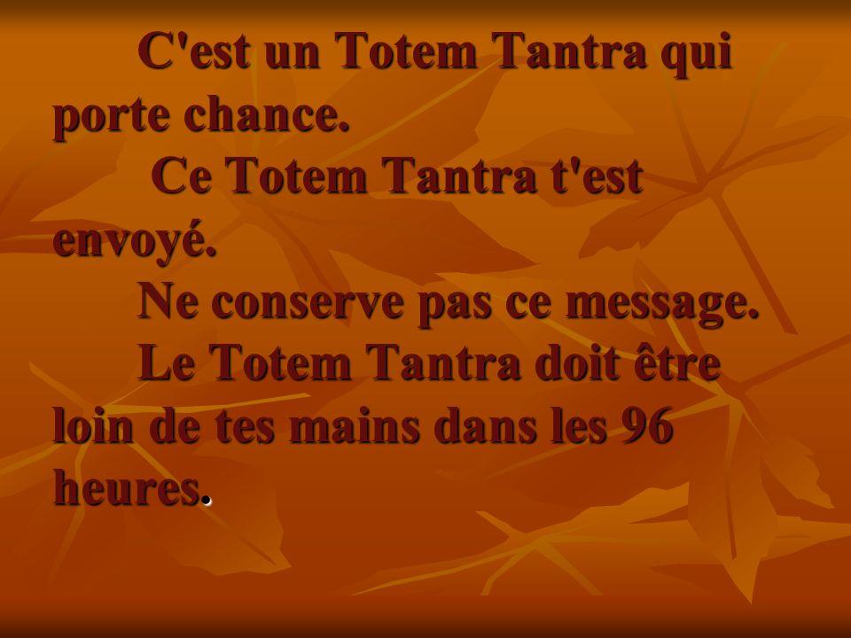 C'est un Totem Tantra qui porte chance. Ce Totem Tantra t'est envoyé. Ne conserve pas ce message. Le Totem Tantra doit être loin de tes mains dans les