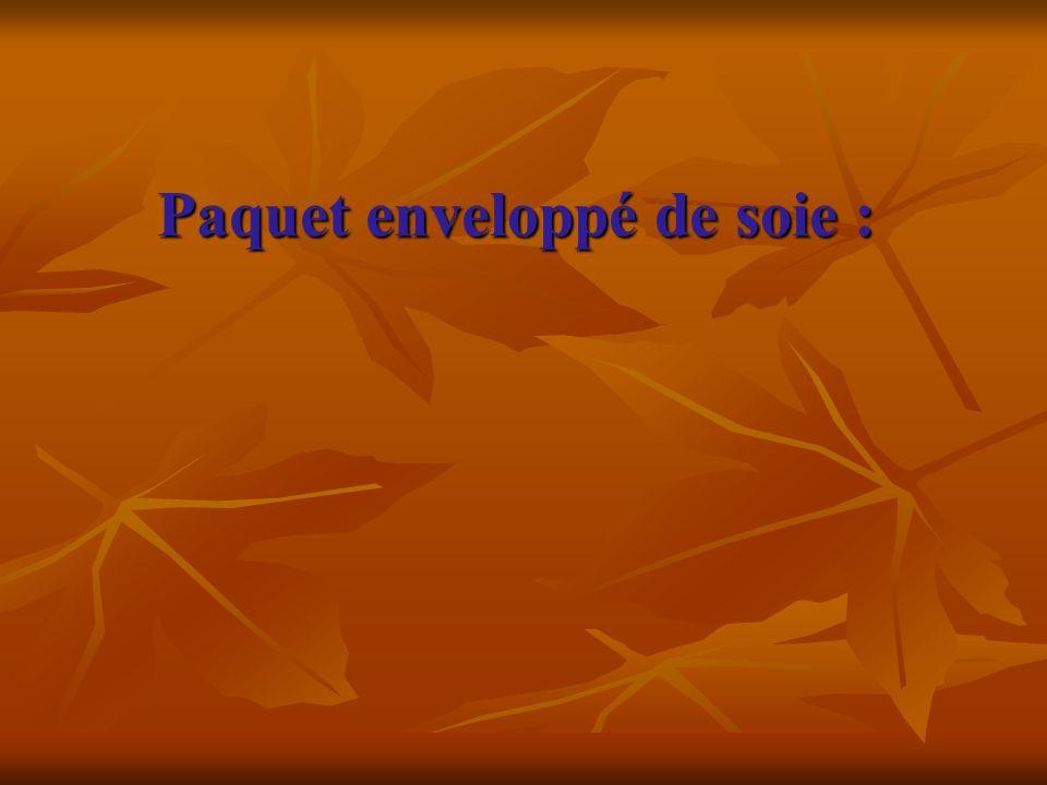 Paquet enveloppé de soie : Paquet enveloppé de soie :
