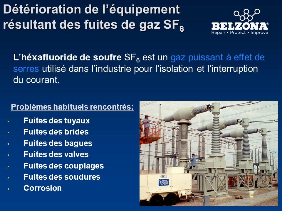 Détérioration de léquipement résultant des fuites de gaz SF 6 Problèmes habituels rencontrés: Fuites des tuyaux Fuites des brides Fuites des bagues Fu