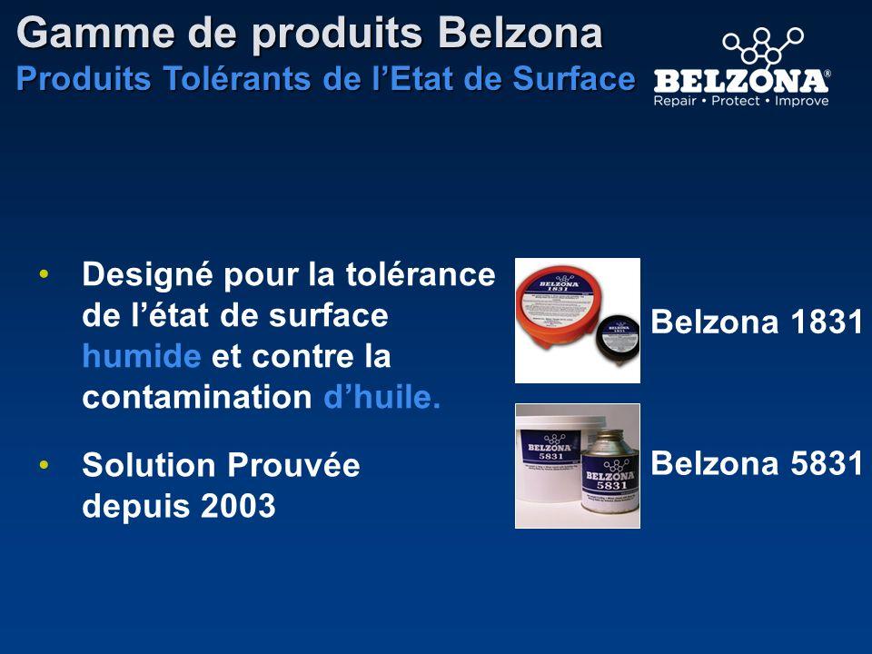 Gamme de produits Belzona Produits Tolérants de lEtat de Surface Belzona 1831 Belzona 5831 Solution Prouvée depuis 2003 Designé pour la tolérance de l