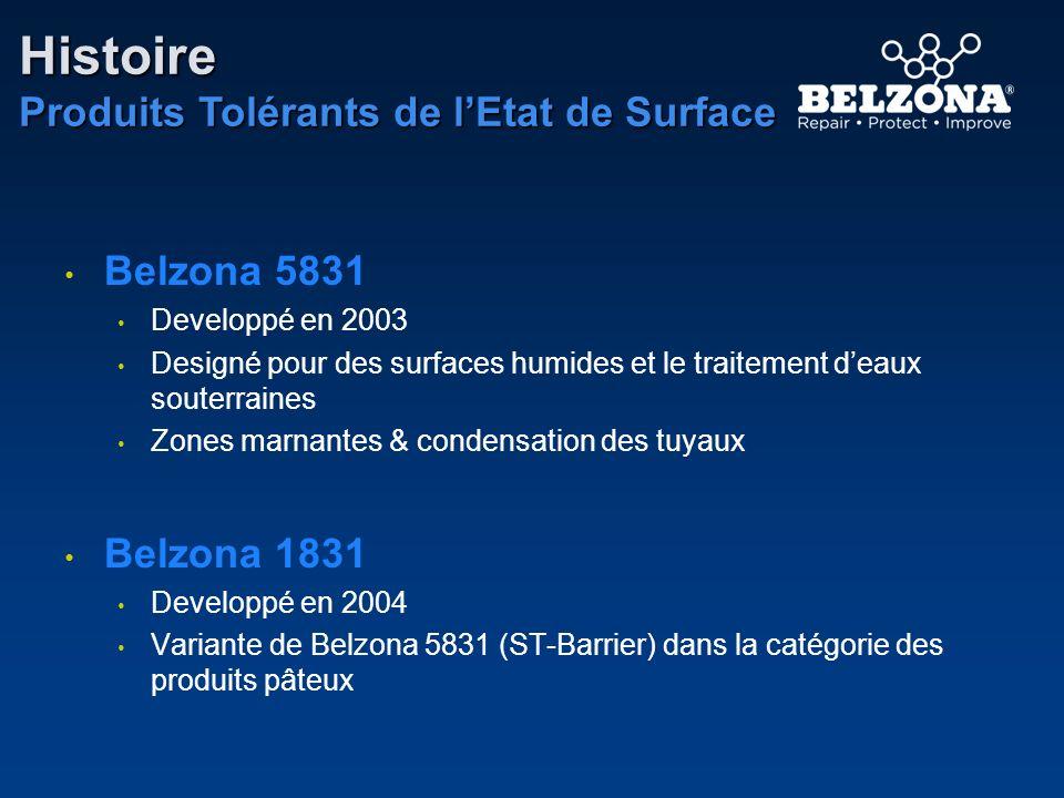 Belzona 5831 Developpé en 2003 Designé pour des surfaces humides et le traitement deaux souterraines Zones marnantes & condensation des tuyaux Belzona