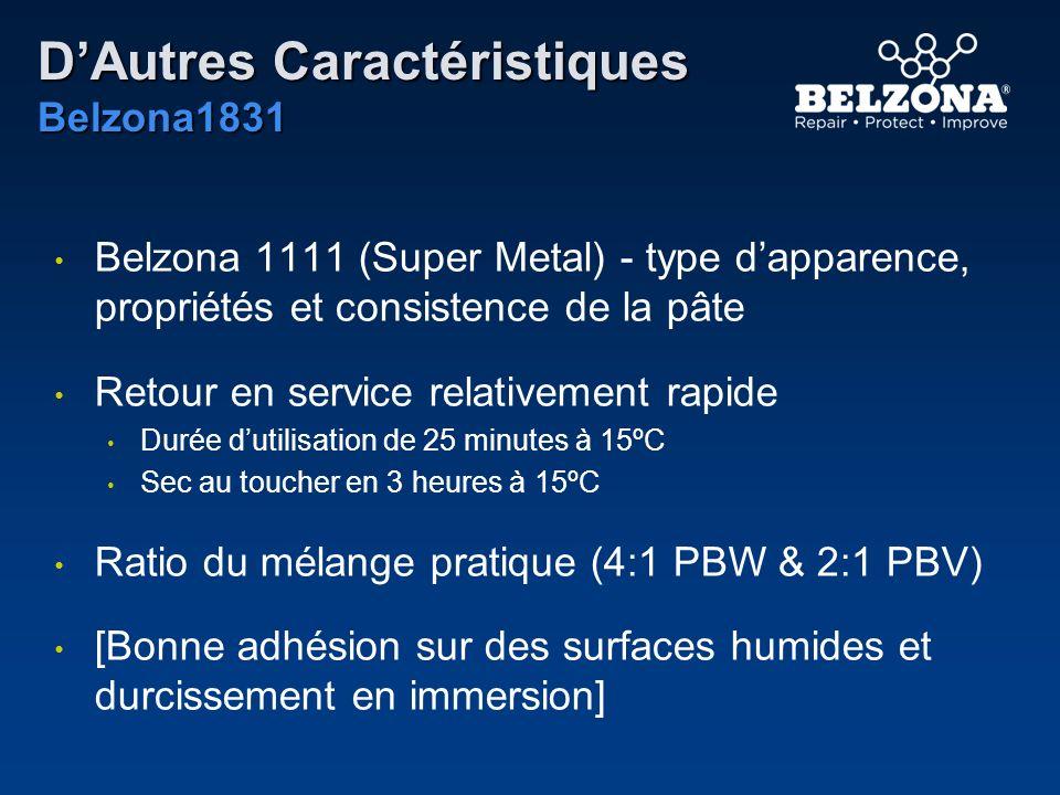 DAutres Caractéristiques Belzona1831 Belzona 1111 (Super Metal) - type dapparence, propriétés et consistence de la pâte Retour en service relativement