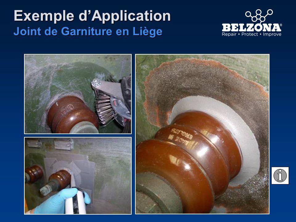 Exemple dApplication Joint de Garniture en Liège