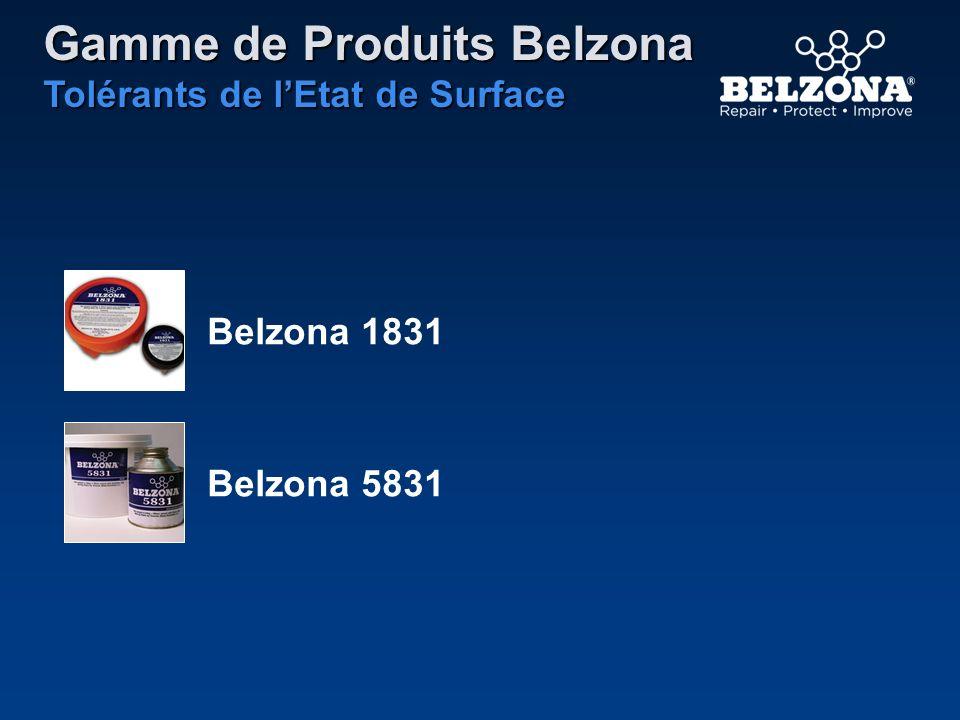 Gamme de Produits Belzona Tolérants de lEtat de Surface Belzona 1831 Belzona 5831