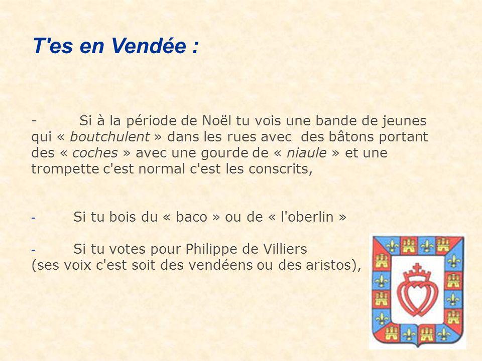 ALORS VIENS DANS CE MERVEILLEUX DEPARTEMENT OU IL FAIT SI BON VIVRE : La Vendée..