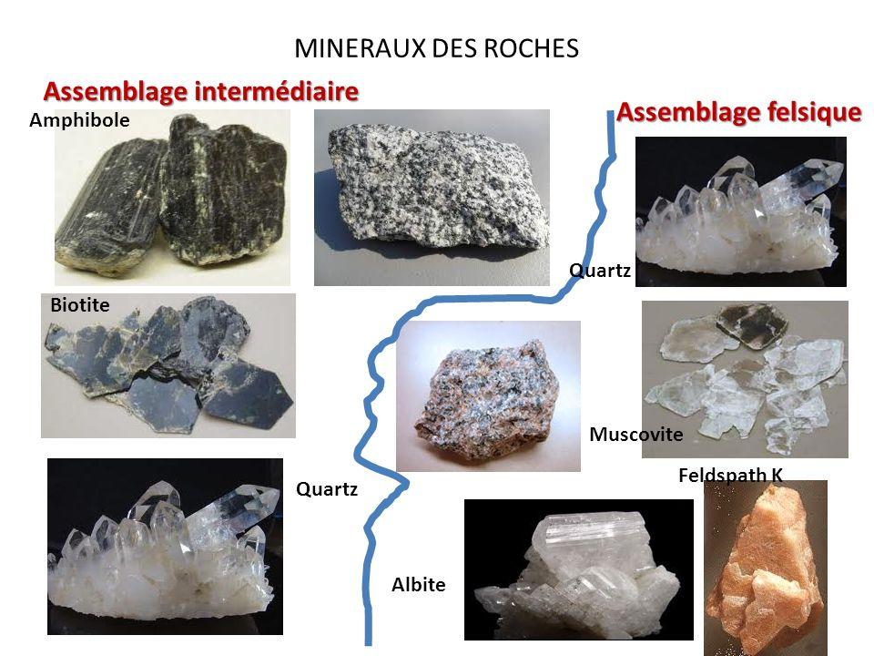 MINERAUX DES ROCHES Assemblage intermédiaire Assemblage felsique Amphibole Biotite Quartz Albite Muscovite Feldspath K Quartz