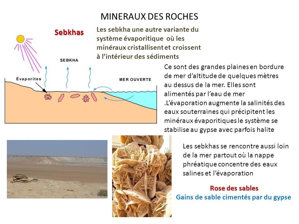 MINERAUX DES ROCHES Les sebkha une autre variante du système évaporitique où les minéraux cristallisent et croissent à lintérieur des sédiments Sebkha