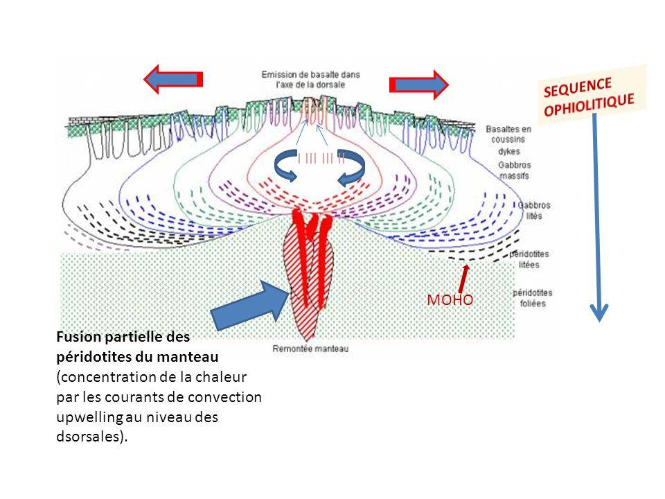 Fusion partielle des péridotites du manteau (concentration de la chaleur par les courants de convection upwelling au niveau des dsorsales). MOHO I III
