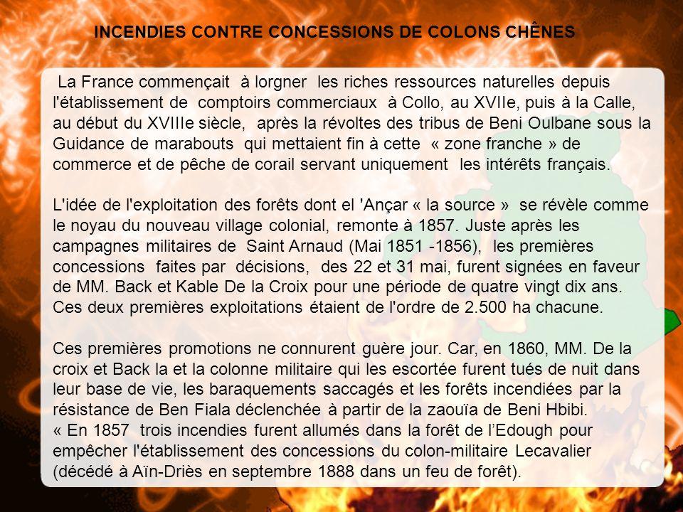 INCENDIES CONTRE CONCESSIONS DE COLONS CHÊNES La France commençait à lorgner les riches ressources naturelles depuis l établissement de comptoirs commerciaux à Collo, au XVIIe, puis à la Calle, au début du XVIIIe siècle, après la révoltes des tribus de Beni Oulbane sous la Guidance de marabouts qui mettaient fin à cette « zone franche » de commerce et de pêche de corail servant uniquement les intérêts français.