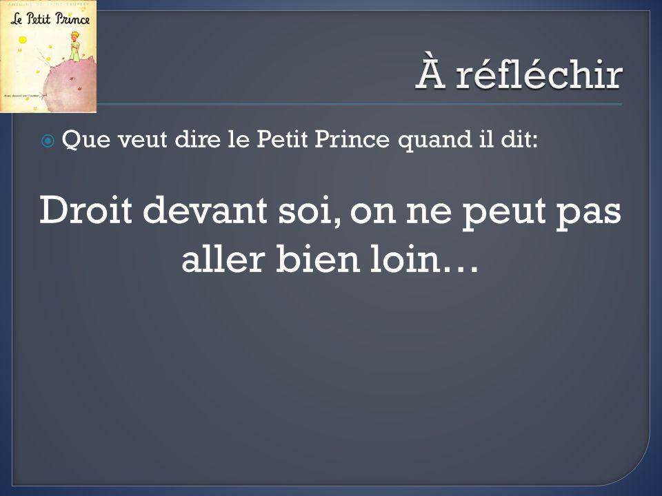 Que veut dire le Petit Prince quand il dit: Droit devant soi, on ne peut pas aller bien loin…