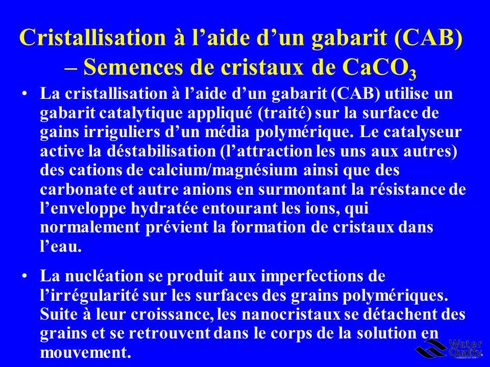 Cristallisation à laide dun gabarit (CAB) – Semences de cristaux de CaCO 3 La cristallisation à laide dun gabarit (CAB) utilise un gabarit catalytique