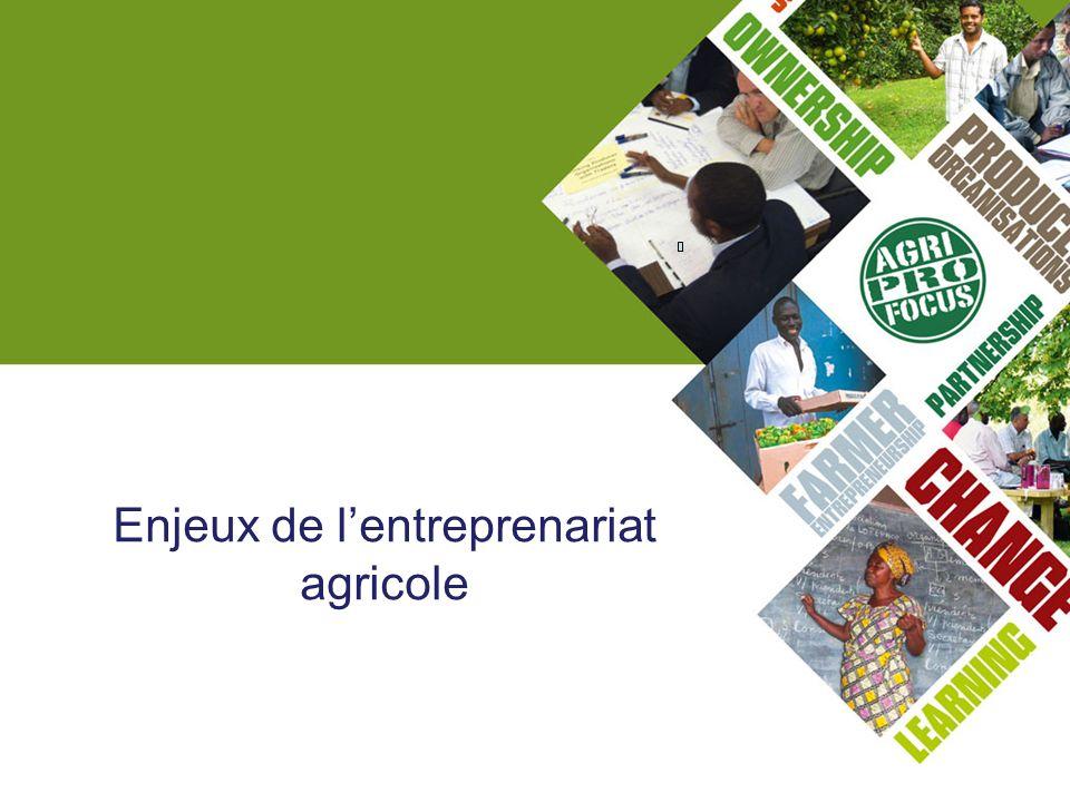 Enjeux de lentreprenariat agricole