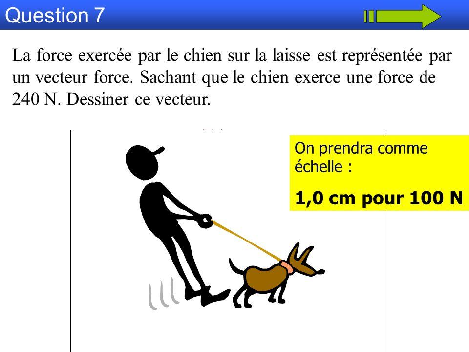 Question 7 La force exercée par le chien sur la laisse est représentée par un vecteur force. Sachant que le chien exerce une force de 240 N. Dessiner
