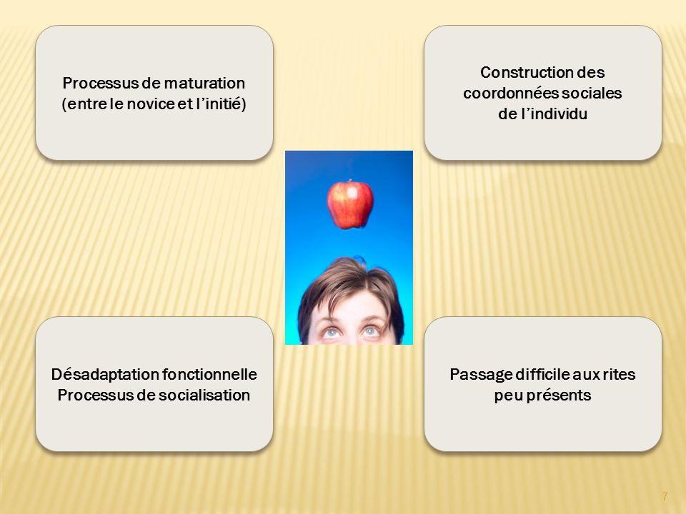 Processus de maturation (entre le novice et linitié) Désadaptation fonctionnelle Processus de socialisation Désadaptation fonctionnelle Processus de s