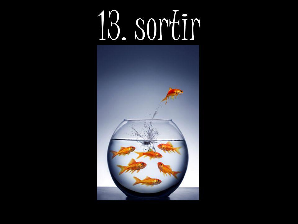 13. sortir