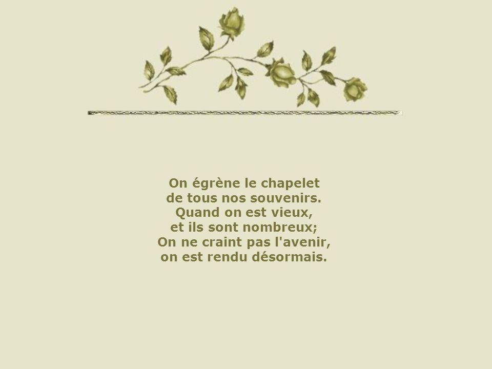 Cliquez pour débuterhttp://www.chezserenite.com