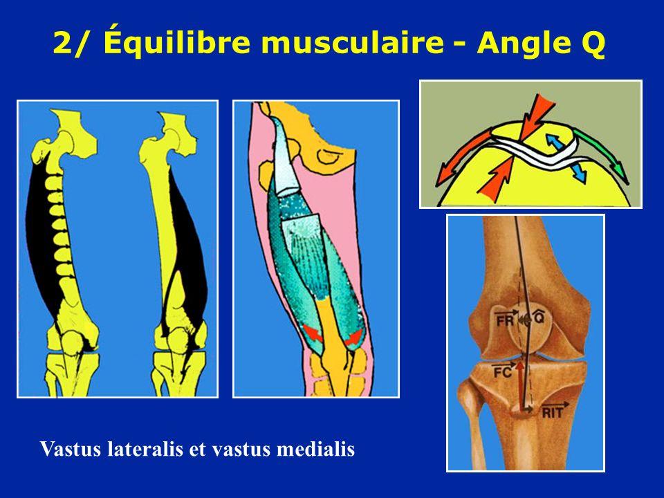 2/ Équilibre musculaire - Angle Q Vastus lateralis et vastus medialis